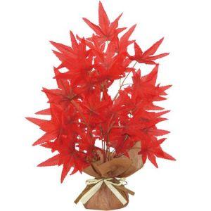 【秋装飾】キュートラップ紅葉(12個セット)イメージ