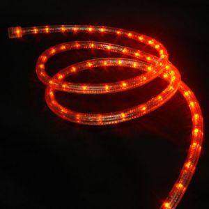 【LED】LEDロープライト(オレンジ)イメージ