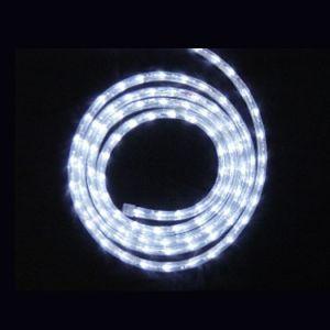 【LED】LEDロープライト(ホワイト)イメージ