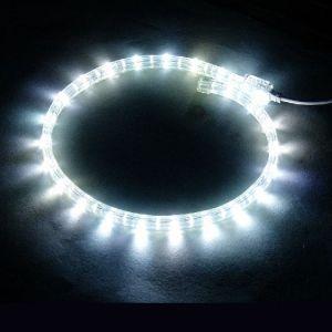 【LED】LED幅広ロープライト(ホワイト)イメージ