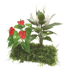 【フラワー装飾】ドーム型ガーデンキット アンスリウム・スパティフィラム&グリーンベースイメージ