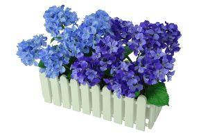 【フラワー装飾】ウインドウプランター アジサイ(入れ替え用)イメージ
